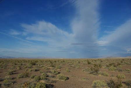 yucca: Desert and Yucca mountains, Nevada Stock Photo
