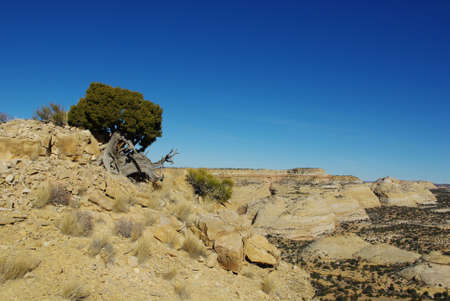 eagle canyon: Scenery near Eagle Canyon, Utah