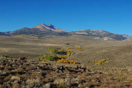 Autumn scenery in barren mountains, California