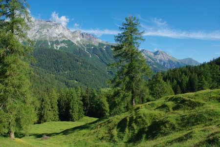 Scenery near V�ttis, Switzerland