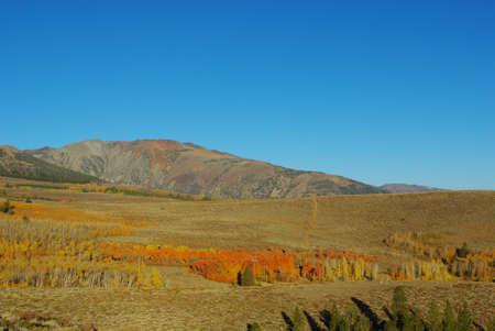 excelsior: Autumn near Excelsior Mountain, California Stock Photo