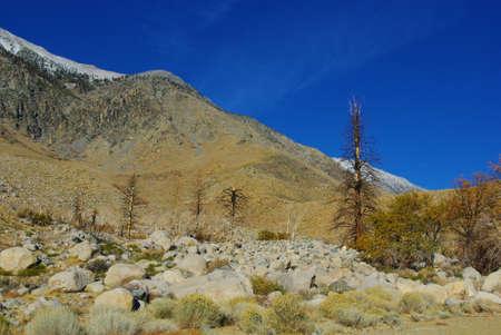 high sierra: High Sierra Nevada valley Stock Photo