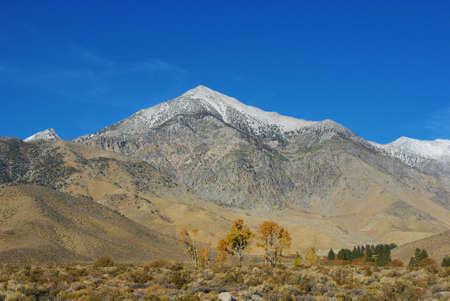 Autumn trees and Sierra Nevada