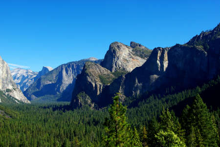 Forest and rocks, Yosemite Stock Photo