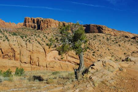 Scenery near Kayenta, Arizona