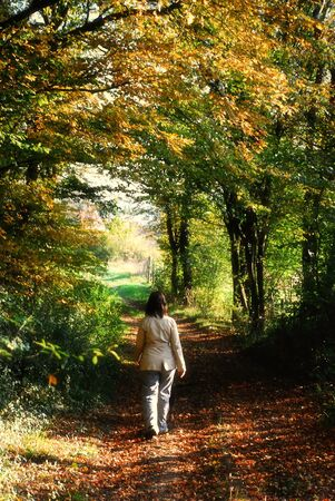 Autumn view of a woman taking a walk in a beautiful forest photo