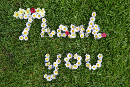 Thank you flower message photo