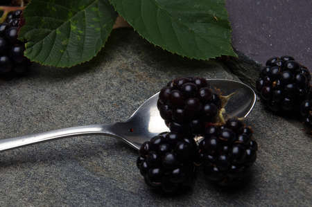 served: Blackberries being served Stock Photo