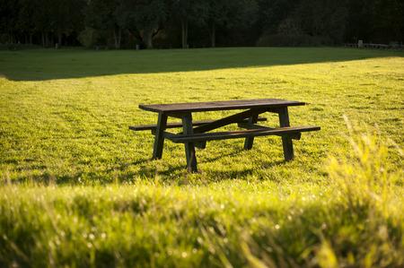 heaving: normal boring picnic table for eating or heaving fun