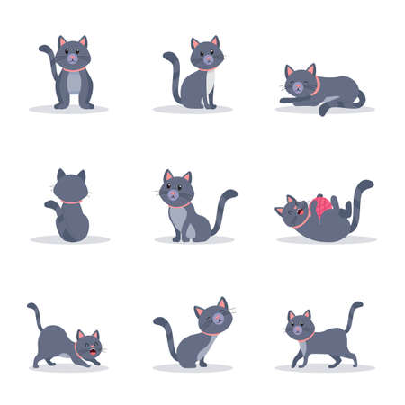 Cute grey cats vector color illustrations set. Playful and naughty kitten in different poses flat cliparts. Cartoon domestic animal character. Funny pet in pink collar isolated design elements pack Stock Illustratie