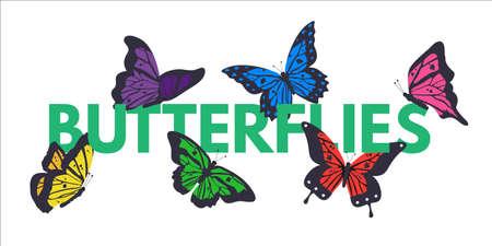 Butterflies color vector banner with copyspace Illusztráció