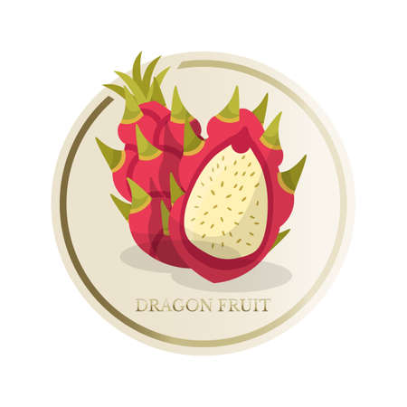 Dragon fruit flat circle sticker isolated on white background Ilustração