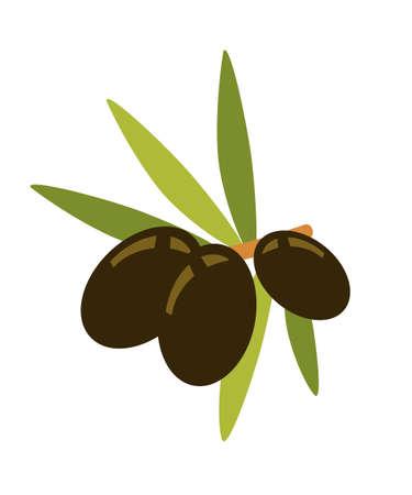 Olives on branch flat vector illustration Ilustração