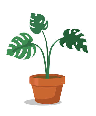 Houseplant flat vector illustration
