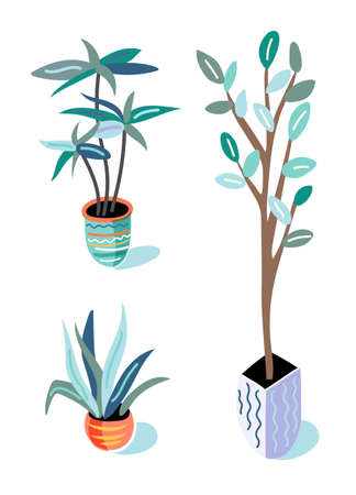 Plants in pots flat vector illustrations set