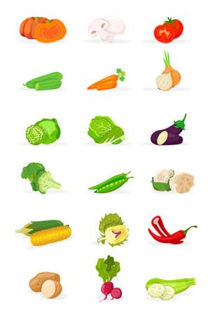 Fresh vegetables vector illustrations set