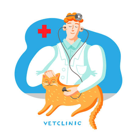 Cat in veterinary office flat vector illustration Reklamní fotografie - 138168017