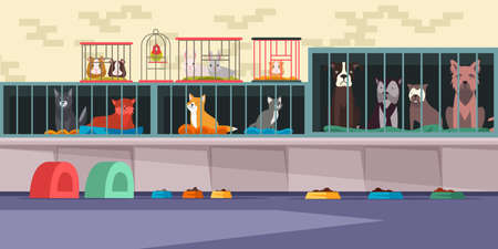 Animal shelter, pet shop flat vector illustration. Adoption center for stray and homeless pets. Cute cats, lonely dogs, guinea pigs, small hamster, bunnies and parrot in cages. Veterinary clinic