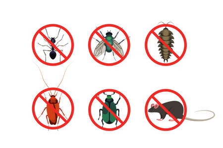 Stop insects and pests signs cartoon set