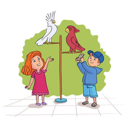 Preschooler boy and girl looking at tropical sweet cockatoo parrots bird on perch. Contact zoo visit. Fun and entertainment. Cartoon children characters having playful time. Vector flat illustration