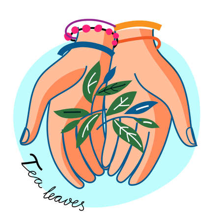 Woman hand hold tea leaves on blue round backdrop. Human palm with botanical herbal natural sprig. Green sprout and seedling tealeaf. Harvesting and production label. Vector illustration