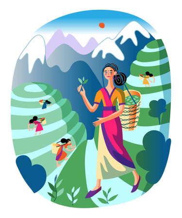 Happy smiling asian girl carrying wicker basket with green tea leaves. Woman in traditional chinese clothes standing on green field background. Traditionally dressed female character. Vector