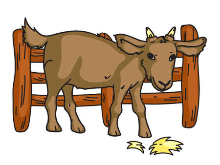 Goat standing behind fence eating hay. Livestock at countryside. Cute yeanling. Domestic farm animal character. Mammal herbivore creature on ranch. Husbandry and farming. Vector illustration
