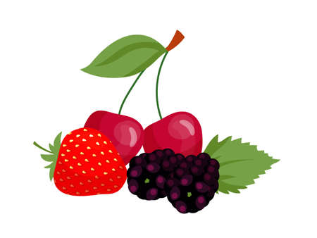 Vector flat illustration of strawberry, cherries, blackberries