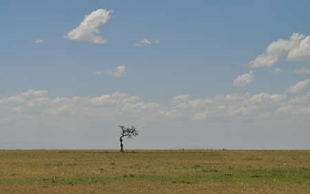 standing alone: Landscape - Standing alone Stock Photo