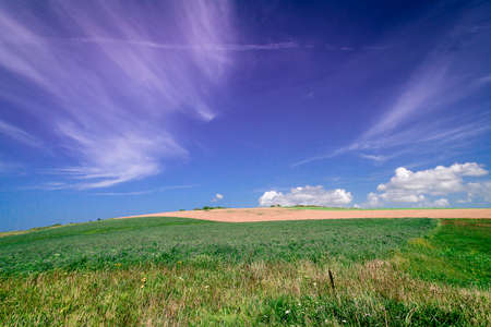 french countryside: Wheat fields wave gently in the French countryside during summer. Stock Photo