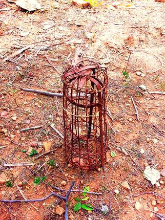 by catch: trampa para atrapar armadillo Foto de archivo