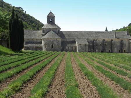 senanque: Senanque Abbey lateral view