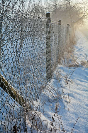 wire fence: Wire fence in the snow Stock Photo