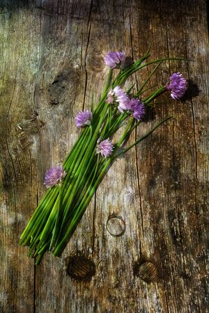 Bunch of chives with purple flowers on old wood