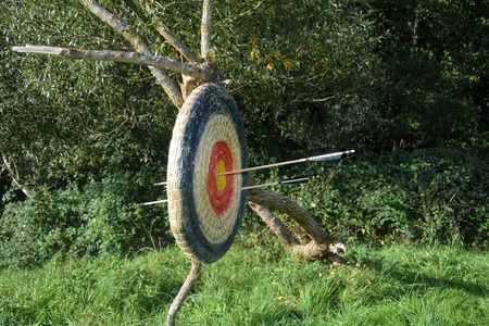 tight focus: Target of straw hanging from the old tree branch with arrows through Stock Photo