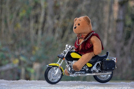 Teddy Bear sits on motorcycle outside