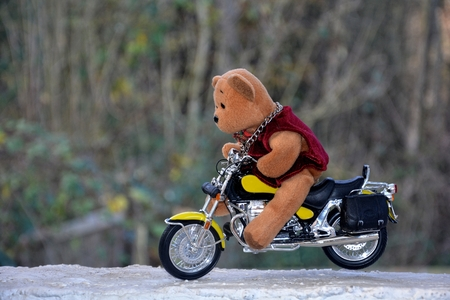 quickness: Teddy Bear sits on motorcycle outside