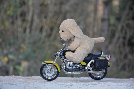 quickness: Dog soft toy sits on motorcycle outside Stock Photo