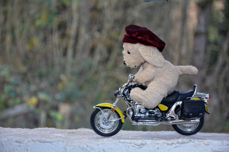 quickness: Dog soft toy with cap sits on motorcycle outside