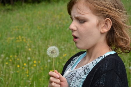 Girl takes a breath around a puffs flower to blow Stock Photo