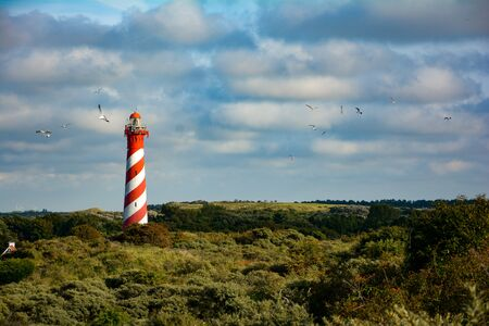 The 53-metre-high lighthouse Westerlichttoren in Nieuw Haamstede in the Netherlands on Zeeland with gulls and copy space