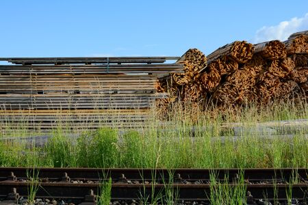 Bundles of wood and stacked boards in a sawmill warehouse, right on train tracks with blue skies and green grasses 写真素材