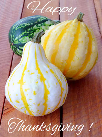 Three pumpkins for thanksgiving with message Standard-Bild