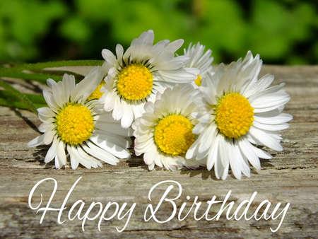 Bild von Geburtstagsgrüße mit Gänseblümchen Standard-Bild - 35059450