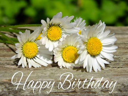 Image of birthday greetings with daisies