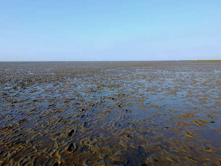 The Wadden Sea in northern Germany