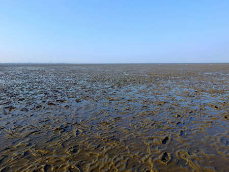 the wadden sea: The Wadden Sea in northern Germany