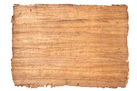papyrus: a big sheet of plain papyros from egypt