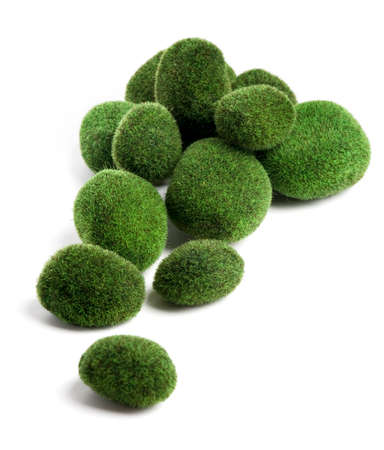 Moss pebbles on white surface Stock Photo - 24121134