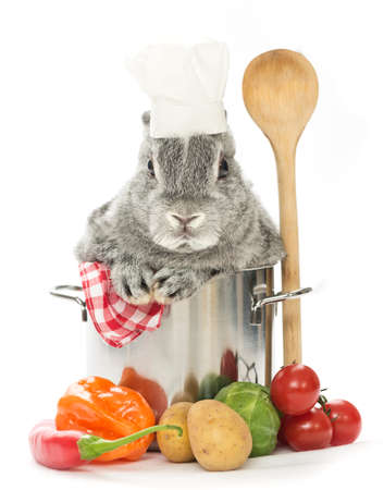 a baby rabbit in a pot with vegetables on white background